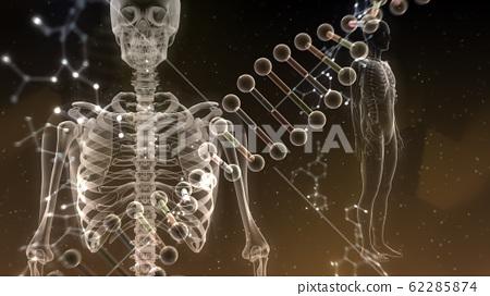 인체 뼈 메디컬 인간 체 의료 의학 두개골 엑스레이 3D 일러스트 CG 배경 62285874