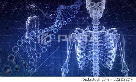 인체 뼈 메디컬 인간 체 의료 의학 두개골 엑스레이 3D 일러스트 CG 배경 62285877