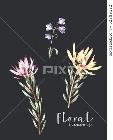 優雅多彩的花卉素材組合 62289122