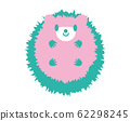 Hedgehog pastel green 62298245