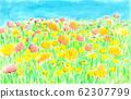 오렌지색과 노란색의 양귀비 밭 62307799