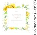 向日葵和黄色的植物框架水彩插图 62309128