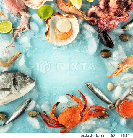 Fish and seafood square frame with a place for text on a blue background. Sea bream. shrimps, crab, sardines, squid, mussels, octopus and scallop, shot from the top 62313634