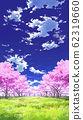 [For vertical PAN] Blue sky and clouds 01 and cherry blossoms 05 Meadow 05 62319660