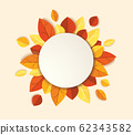Autumn leafs template background vector illustration EPS10 62343582