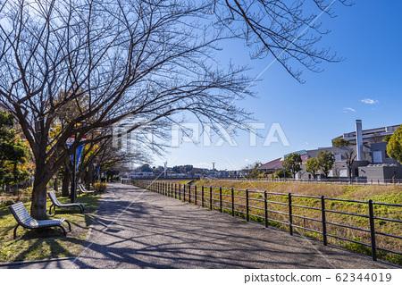 신 요코하마 역 앞 공원 벤치와 가로수 62344019
