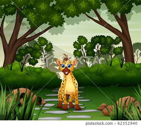 A hyena cartoon living in jungle 62352940