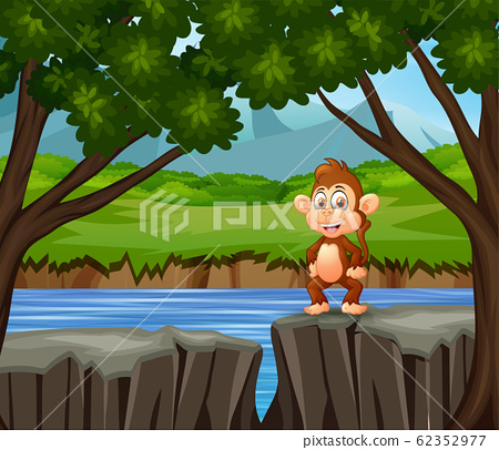 A monkey standing on the cliff 62352977