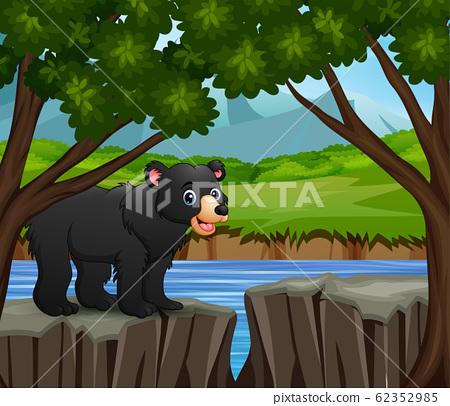 A fox cartoon standing on the cliff 62352985