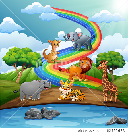 Many wild animals over the rainbow 62353678