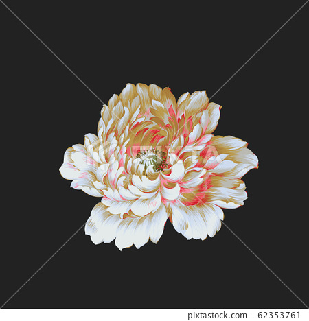 深底上色彩豐富的花卉素材 62353761