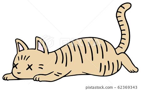Illustration of a fallen cat (tea tiger) _ weak face 62369343