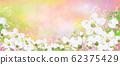 Vector spring, floral background. 62375429