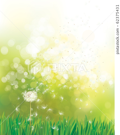 Vector spring  green background. 62375431