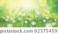 Vector spring  green background. 62375459