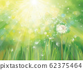 Vector spring  green background. 62375464