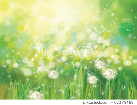 Vector spring  green background. 62375469