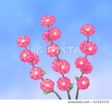 Blue sky and flower peach (dark) 62384310