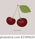 Sweet cherry with a leaf on a gray background. 62390626