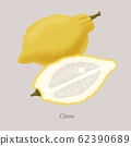 Yellow citron and citron slice, icon isolated on grey background. 62390689