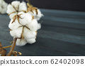 Natural cotton bolls with a branch 62402098