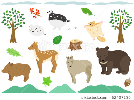 Mountain animals bear deer wild boar 62407156