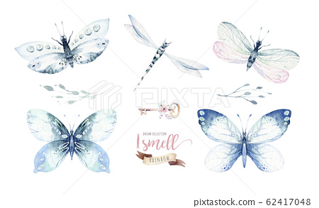 Watercolor colorful butterflies, isolated butterfly on white background. blue, yellow, pink and red butterfly spring illustration. 62417048