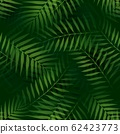 Vector Tropical palm leaves seamless pattern jungle floral ornamental background 62423773