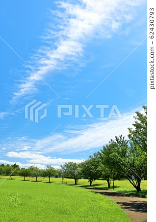 상쾌한 여름의 푸른 하늘과 공원 풍경 62430793