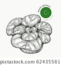 Hand drawn sketch style lettuce salad. Organic 62435561