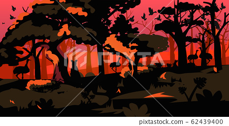 animals silhouettes escaping from forest fires in australia wildfire bushfire burning trees natural disaster concept intense orange flames horizontal 62439400