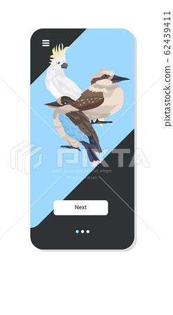 Common starling kookaburra cockatoo birds cartoon wild animals symbol wildlife species fauna concept smartphone screen mobile app vertical copy space 62439411