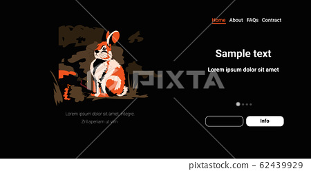 rabbit running from forest fires in australia animals dying in wildfire bushfire natural disaster concept intense orange flames horizontal copy space 62439929
