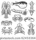 Lobster, squids, crab, shrimp, fugu. Seafood, fish 62450364