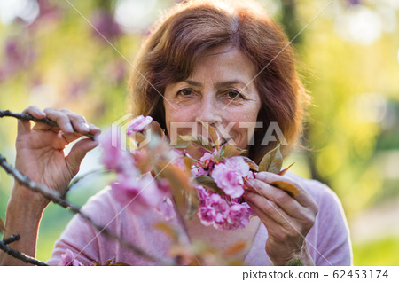 Beautiful senior woman standing outside in spring nature. Copy space. 62453174