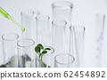Researcher with glass laboratory chemical test 62454892