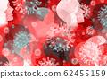 Disease Outbreak 62455159