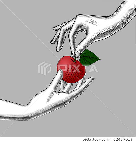 Woman's hands with an apple 62457013