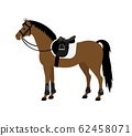 Vector flat bay horse with saddle and bridle 62458071