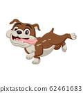 Cartoon bulldog isolated on white background 62461683