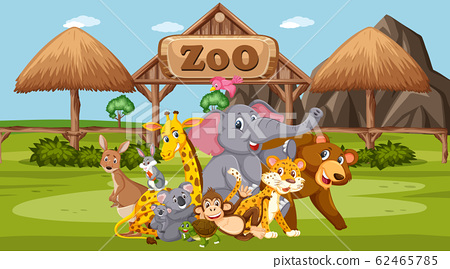 Scene with wild animals in the zoo at day time 62465785
