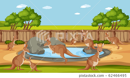 Scene with wild animals in the zoo at day time 62466495