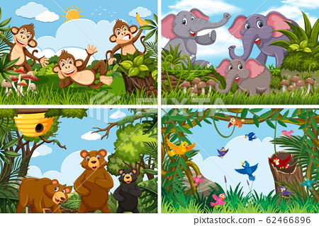 Set of various animals in nature scenes 62466896