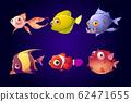 Sea fish, tropical colorful aquarium creatures set 62471655