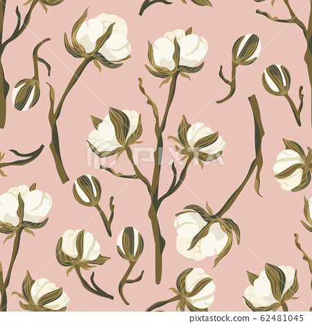 Cotton flower vector seamless pattern. 62481045