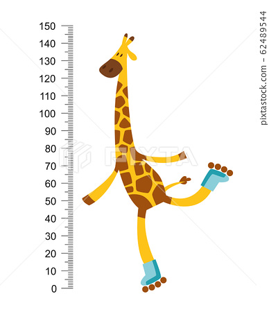 Cheerful funny giraffe on riller with long neck. Height meter or meter wall or wall sticker from 0 to 150 centimeters to measure growth. Childrens vector illustration 62489544