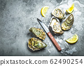 Fresh oysters on ice 62490254
