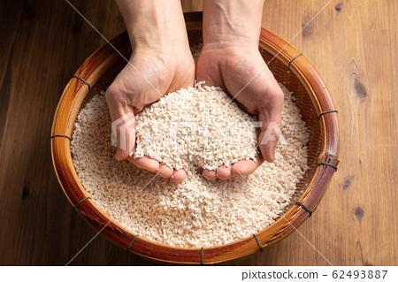 쌀 누룩을 손에 들고 62493887