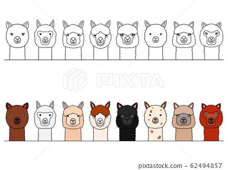 各種羊駝的上身邊界 62494857