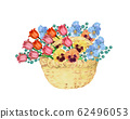Tulip and pansy flower basket 62496053